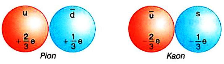atomkuark6