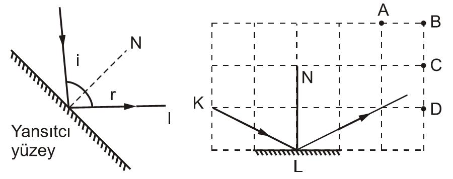 d13 (1)