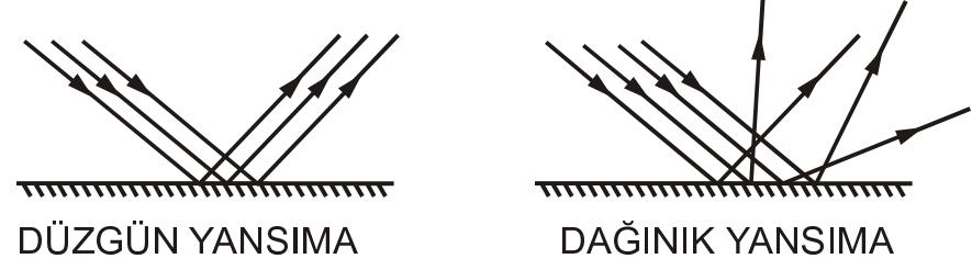 d2 (2)