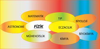 fizbil (2)