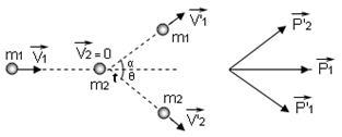 momentum (1)
