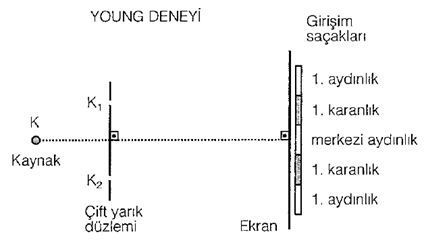 052115_1910_YoungDeneyi1.png?x29959